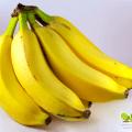 เรื่องกล้วยๆ ลดน้ำหนักด้วยกล้วย กล้วยหอมลดความอ้วน