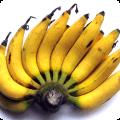 กล้วยเล็บมือนาง ผลไม้เครือมีกลิ่นหอมเหมือนกล้วยหอม มีขนก้านเครือและก้านหวี