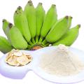 แป้งกล้วย วิธีการทำแป้งกล้วย การแปรรูปกล้วยดิบ