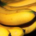 กล้วยไข่ ใบกล้วย ผลกล้วย ต้นกล้วย ประวัติความเป็นมา
