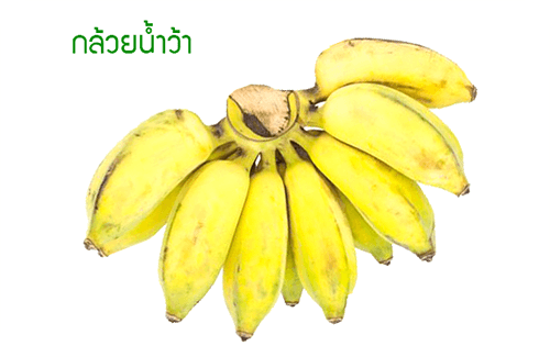 กล้วยน้ำว้า คุณค่าทางอาหาร โภชนาการของกล้วยน้ำว้า