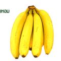 กล้วยหอม คุณค่าทางอาหาร โภชนาการของกล้วยหอม