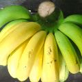 กล้วยดิบ กล้วยห่าม กล้วยสุก กล้วยงอม ประโยชน์และสรรพคุณของกล้วยทั้ง 4 แบบ