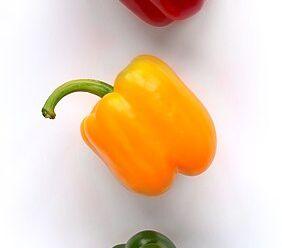 พริกหวาน พริกหยวก สีที่พบมากที่สุดคือสีเขียว สีเหลือง สีส้มและสีแดง