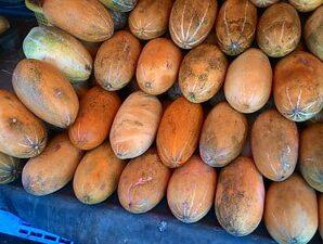 แตงไทย ผลอ่อนของแตงไทยนำมาทานเป็นผักสด ผลสุกทานสดหรือทำเป็นของหวาน