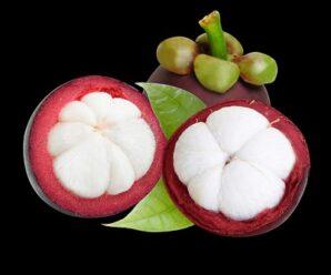 มังคุด ราชินีแห่งผลไม้ เนื้อมังคุดมีคุณค่าทางอาหารสูง
