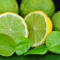 มะกรูด ใบมีกลิ่นหอมช่วยในการดับกลิ่นคาว เพิ่มรสให้อาหาร