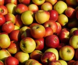 แอปเปิล ผลไม้ที่นิยมทานดิบ มีสรรพคุณลดกรดในกระเพาะอาหาร